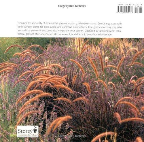 Grasses: Versatile Partners for Uncommon Garden Design