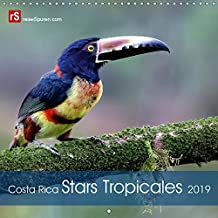 Costa Rica Stars Tropicales 2019: 12 stars colorees de la faune tropicales du Costa Rica captures dans la nature.