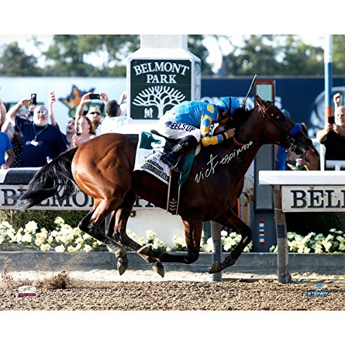 Victor Espinoza Signed American Pharoah Finish Line Celebration 2015 Belmont Stakes 16x20 Photo (Signed in Silver)