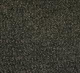 Guardian Golden Series Chevron Indoor Wiper Floor