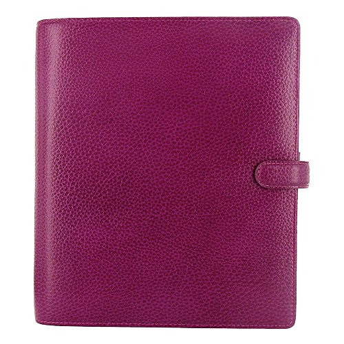 Finsbury Personal Organizer - Filofax 2019 A5 Finsbury Organizer, Raspberry, Paper Size 8.25 x 5.75 inches (C025371-19)