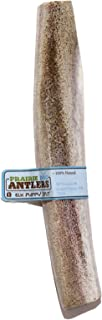 product image for Prairie Dog Pet Products Elk Antler Puppy Split (Assorted Color)