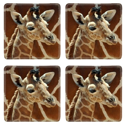 Giraffe Small Calf Face Pattern Cute Baby Africa Wildlife Animal Square Coaster (4 Piece) Set Fabric Rubber 5 Inch Size Luxlady Coaster Cup Mug Can Water Bottle Drink Coasters Stain Resistance Collector Kit Kitchen Table Top Desk