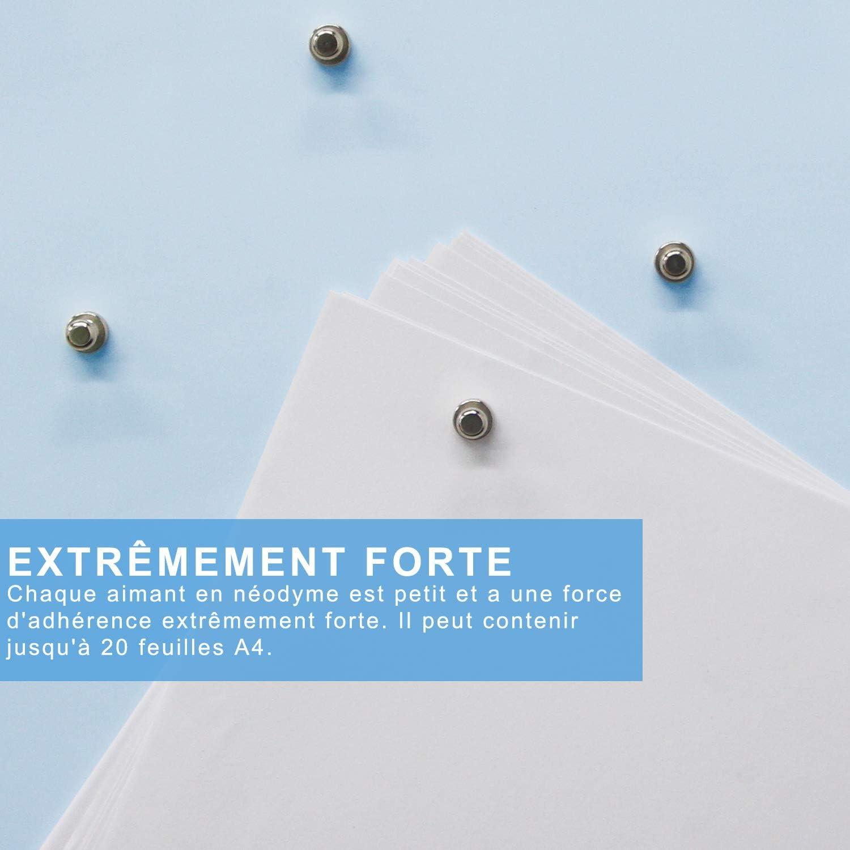 magneti a cono in acciaio inossidabile Magneti per frigorifero per lavagna bianca Bdwing Magneti al neodimio 24 pezzi Mini magneti 12 x 16 mm magneti in metallo N52 estremamente potenti