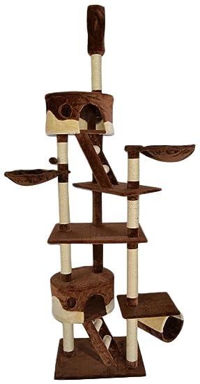 Dibea KB00406 Árbol Rascador Escalador para Gatos, 240-260 cm, Altura Ajustable del Techo Marrón y Beige: Amazon.es: Productos para mascotas