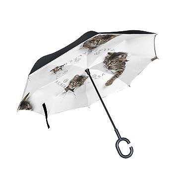 Mnsruu Paraguas invertido Gatos en Agujeros Doble Capa Plegable Paraguas Resistente al Viento UV Paraguas de Viaje para Mujeres y Hombres: Amazon.es: ...