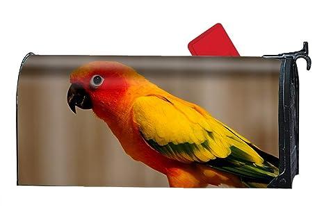 5e9b403da13a Amazon.com  Verna Christopher Animal Parrots Magnetic Mailbox Cover ...