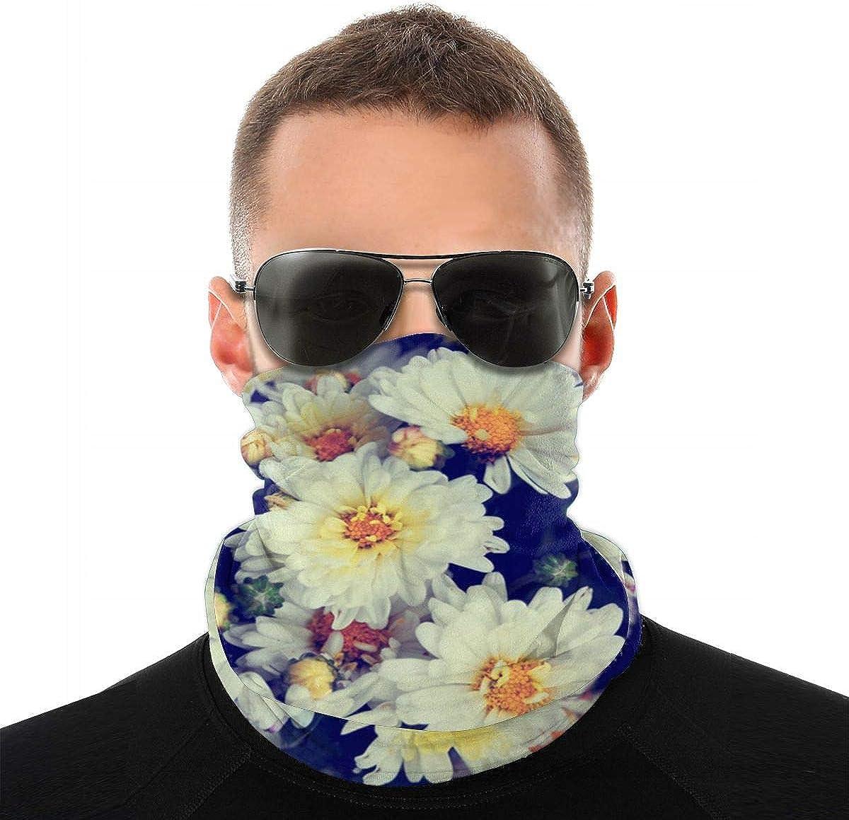 Daily Bandana Headband Set Big Daisy Flower Sport Sun Protection Windproof Dust Face Scarf Headdress
