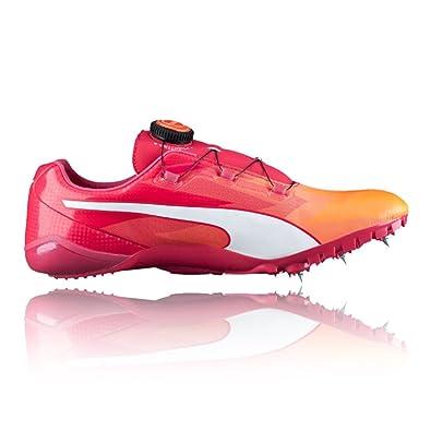 c8482a304c19 Puma Evospeed Disc V6 Women s Running Spike - 5.5  Amazon.co.uk ...