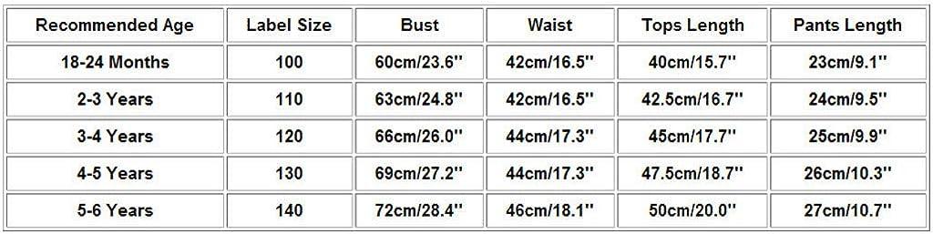 Ensemble B/éB/é Fille T-Shirt Manche Courte Enfants Tee Shirt Tops Casual+Shorts Pantalons Fleurs Imprim/éEs Sweats V/êTement B/éB/é Fille 24 Mois-6 Ans Wolfleague