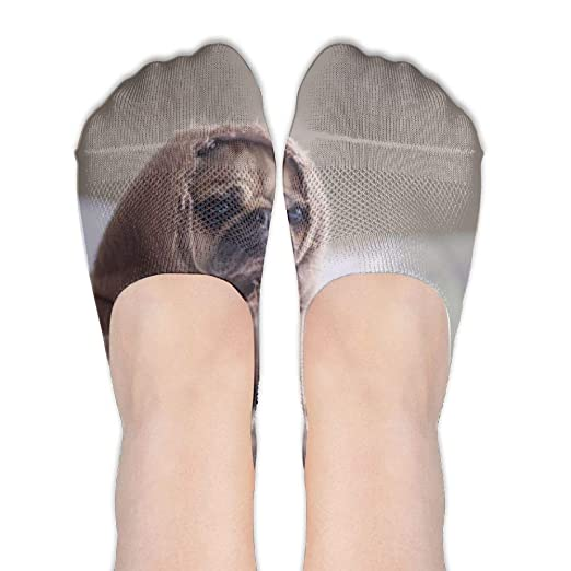 Pet Dog No Show Socks - Women s Casual 3D Printed Non-Slip Liner Sock at  Amazon Women s Clothing store  b647001a8
