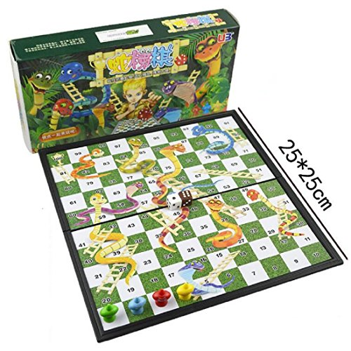 "Magnetic Snakes and Ladders Set 9.8"" W3181"