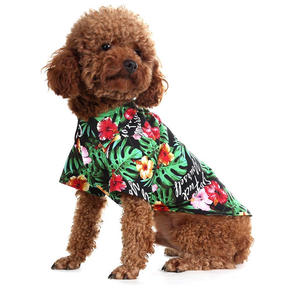 Amazon.com: EXPAWLORER - Camiseta hawaiana para perro ...