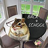 Mikihome Luxury Round Table Cloth for Home use Funny Chipmunk in Glasses,Back to School Concept for Buffet Table, Holiday Dinner 31.5''-35.5'' Round (Elastic Edge)