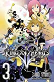 Kingdom Hearts II, Vol. 3 - manga