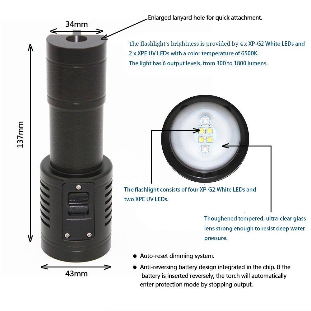 KC Fire 1800/lumens 6/modes 4/XP-G2/LED Lumi/ère de plong/ée sous-marine 100/m vid/éo//photo professionnel plong/ée lampe de poche 2/LED UV Lampe torche tactique