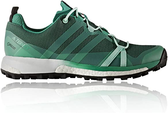 adidas Terrex Agravic GTX W, Chaussures de Randonnée Femme