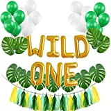 Muhuyi Wild One Birthday Decorations Kit, 16 Inch WILD ONE Balloons with 12 Pcs Artificial Palm Leaves for Baby Girl Boy 1st Bday Party Supplies