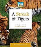 A Streak of Tigers, Alex Kuskowski, 1617835420