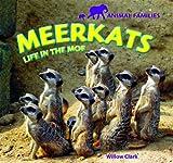 Meerkats, Willow Clark, 144882608X