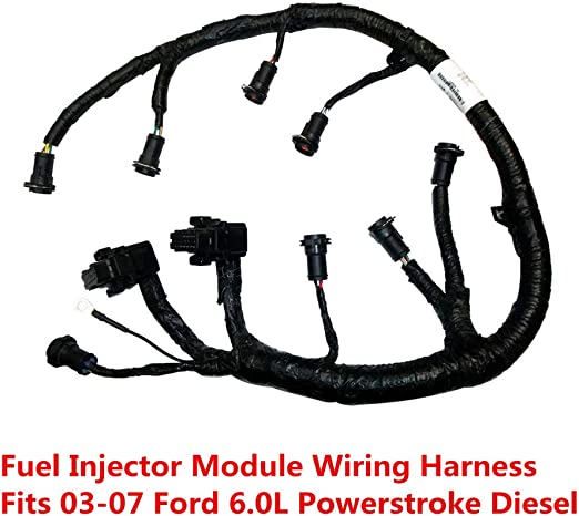 Amazon.com: FICM Engine Fuel Injector Complete Wire Harness - 5C3Z9D930A -  Compatible with for Ford Powerstroke 6.0L Diesel 2003, 2004, 2005, 2006,  2007 F250 F350 F450 F550 Excursion -BlackAmazon.com
