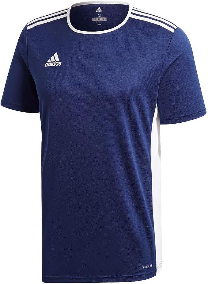 adidas Entrada 18 JSY T-Shirt, Hombre: Amazon.es: Ropa y accesorios