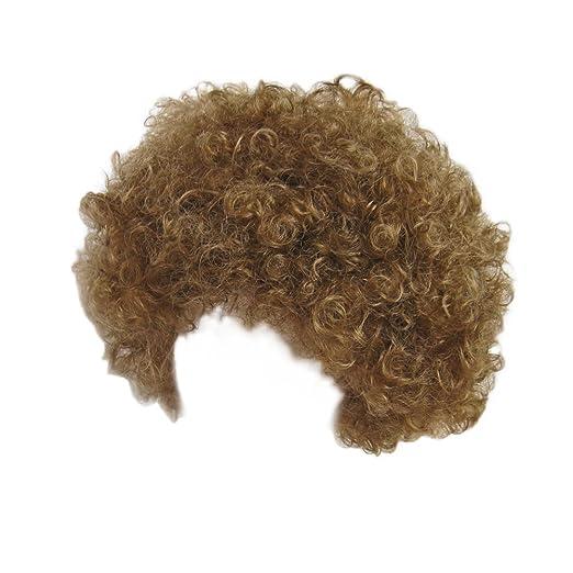 Amazon.com  SeasonsTrading Economy Brown Afro Wig ~ Halloween Costume Party  Wig (STC13034)  Clothing 8f89435210b6