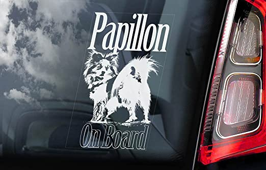 Papillon car window sticker dog sign internal reverse printed v01