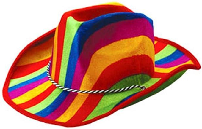 e64864400 New Cowboy or Girl Rainbow Pride Striped Felt Party Hat