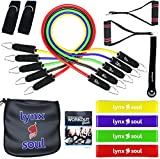 16 PCS Premium Pro-Series Resistance Band Set by LYNXSOUL- THE MOST COMPLETE KIT - with Door Anchor, Ankle Straps, Handles, Tube and Loop Bands and Everything you Need to Workout.