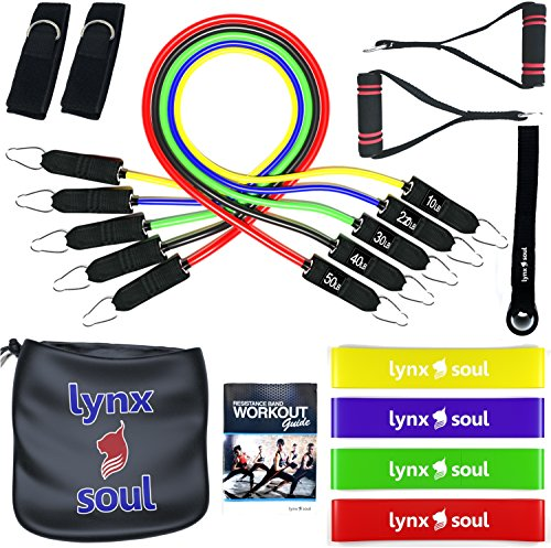 16 PCS Premium Pro Resistance Rubber Band Set by LYNXSOUL - Complete Exercise KIT - Door Anchor, Ankle Straps, Handles, Tube and Loop Bands Ideal for Training and - Fitness Tube Kit