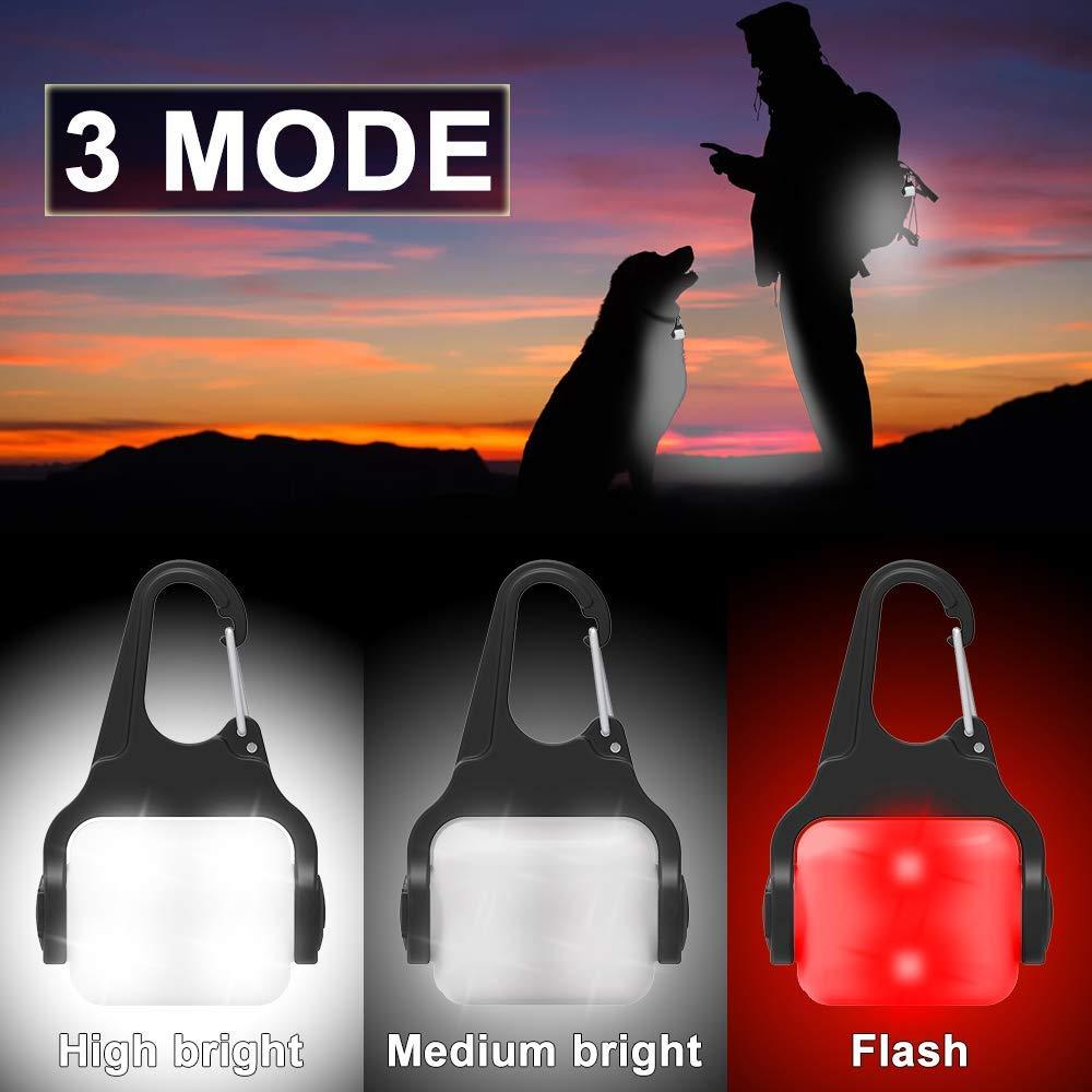Amazon.com: Derlights Collar de perro luz con USB recargable ...