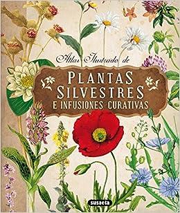 Atlas Ilustrado De Las Plantas Silvestres E Infusiones Curativas por Aa.vv epub