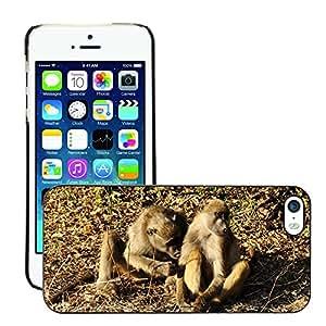 Etui Housse Coque de Protection Cover Rigide pour // M00133930 Baboon Ape Afecto Piel Cuidado Sit // Apple iPhone 5 5S 5G