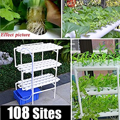 LIUXING Sistema de Plantas de jardín Hidropónica Kit de Cultivo de ...