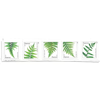 USPS Ferns Forever Stamps - 1 Strip of 10 Stamps: Toys & Games