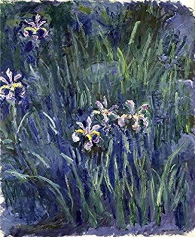Oil Painting 'Iris, 1914-1917 By Claude Monet' Printing On Perfect Effect Canvas , 12x15 Inch / 30x37 Cm ,the Best Foyer Artwork And Home Decoration And Gifts Is This Beautiful Art Decorative Canvas Prints