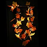 Amazon Price History for:Thanksgiving Decorations Lighted Fall Garland, Thanksgiving Decor Halloween String Lights 8.2 Feet 20 LED, Thanksgiving Gift