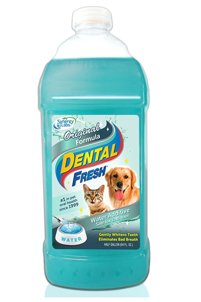 SynergyLabs Dental Fresh Original Formula, 1/2 gallon