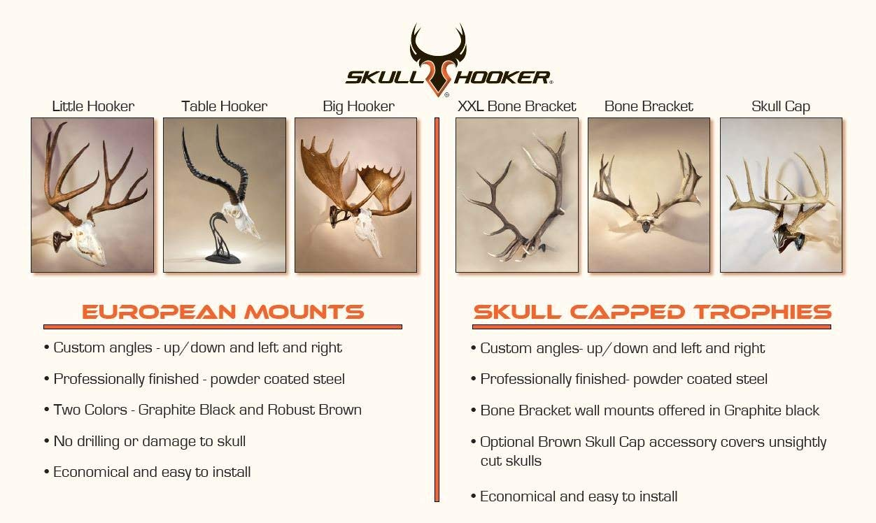 Skull Hooker Trophy Tree European Trophy Mount - Hang up to 5 Taxidermy Deer Antlers and other Skulls for Display - Graphite Black by Skull Hooker (Image #7)