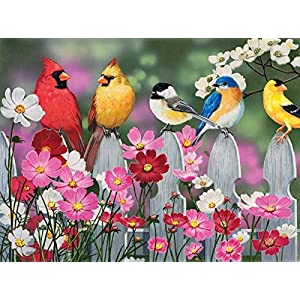 Songbirds And Cosmos A 500 Piece Jigsaw Puzzle By Sunsout Inc By Sunsout