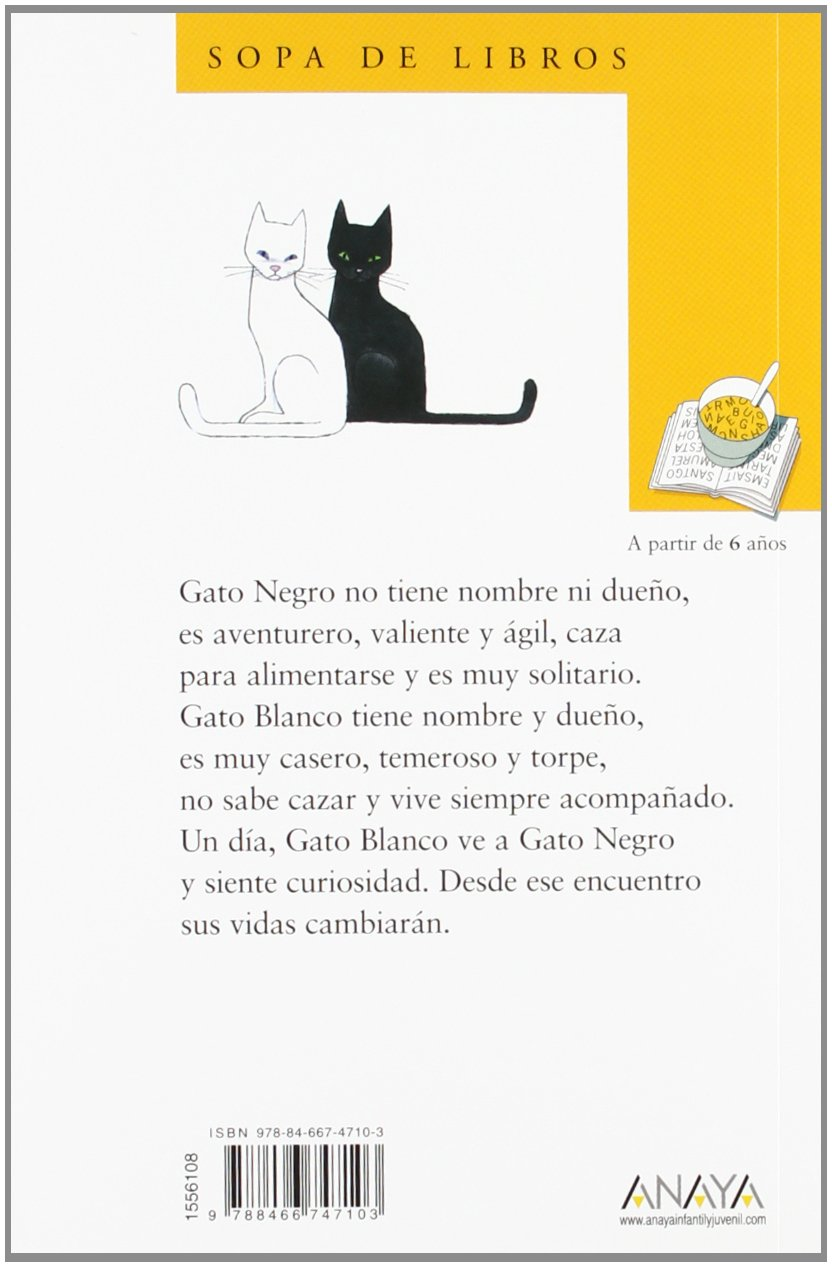 Gato negro gato blanco / Black cat white cat (Cuentos, Mitos Y ...