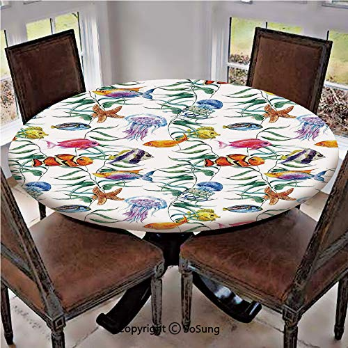 - Elastic Edged Polyester Fitted Table Cover,Tropical Coral Reef with Seaweed Algae Jellyfish Aquatic Saltwater Nemo Theme,Fits up 40