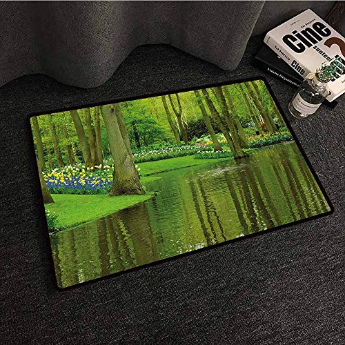DILITECK Outdoor Door mat Nature Forest with Lake Dutch Garden Pastoral Woodland Botany Flowerbed Picture Quick and Easy to Clean W24 xL35 Fern and Lime Green