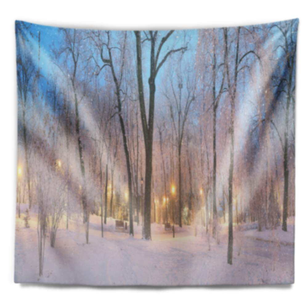 Created On Lightweight Polyester Fabric 80 in x 68 in Designart TAP9178-80-68  Dark Foggy Mariinsky Garden Landscape Photography Blanket D/écor Art for Home and Office Wall Tapestry x Large