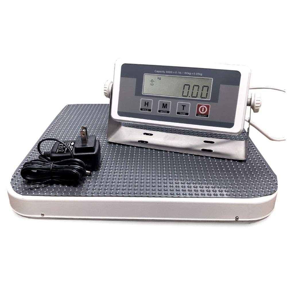 ANGEL USA Medical High Precision Physician Digital Scale, Body Weight Doctor Weighing Balance Health Fitness by ANGEL USA