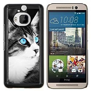Stuss Case / Funda Carcasa protectora - Azul del ojo de gato - HTC One M9Plus M9+ M9 Plus