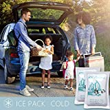 Set of 48 Cooler Shock Lunch Bag Size ice Packs for