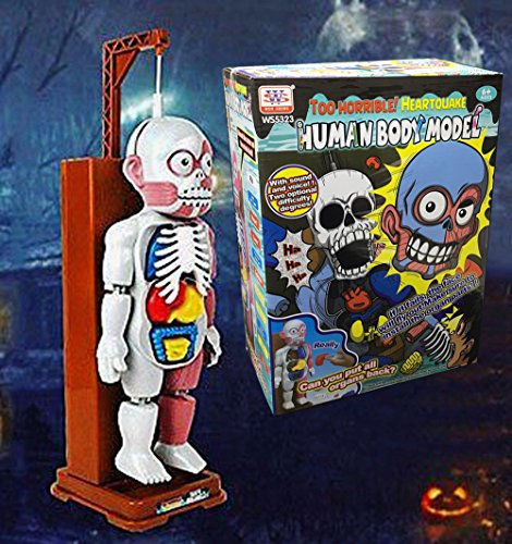 Human Body 3d Model - 3D Puzzle Human Body Organ Model For Kids Horror Spoof Tricky Toys with Background Music Table Game / Desktop Game / Horror Game / Educational Game Toy (idea for Halloween, Christmas gift) ~ CAFOLO