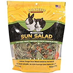 SUNSEED COMPANY 36065 Vita Prima Sun Salad for Rabbits, 10 oz